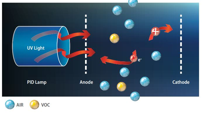 Electrochemical sensor